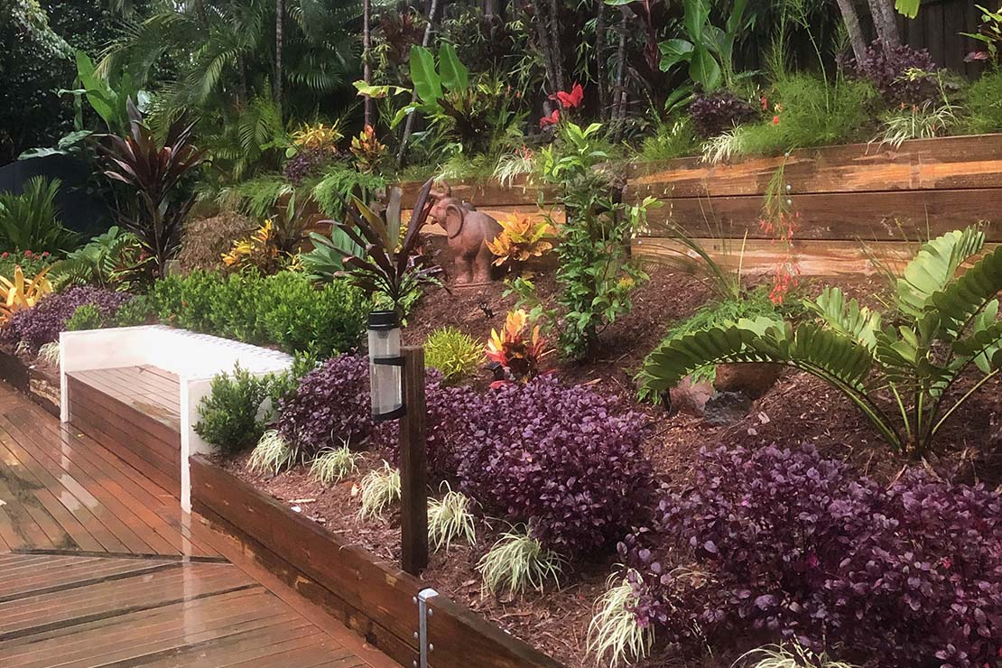 lawn-mowing-gardening-cairns
