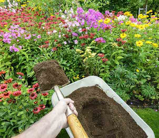 lawn-mowing-gardening-services